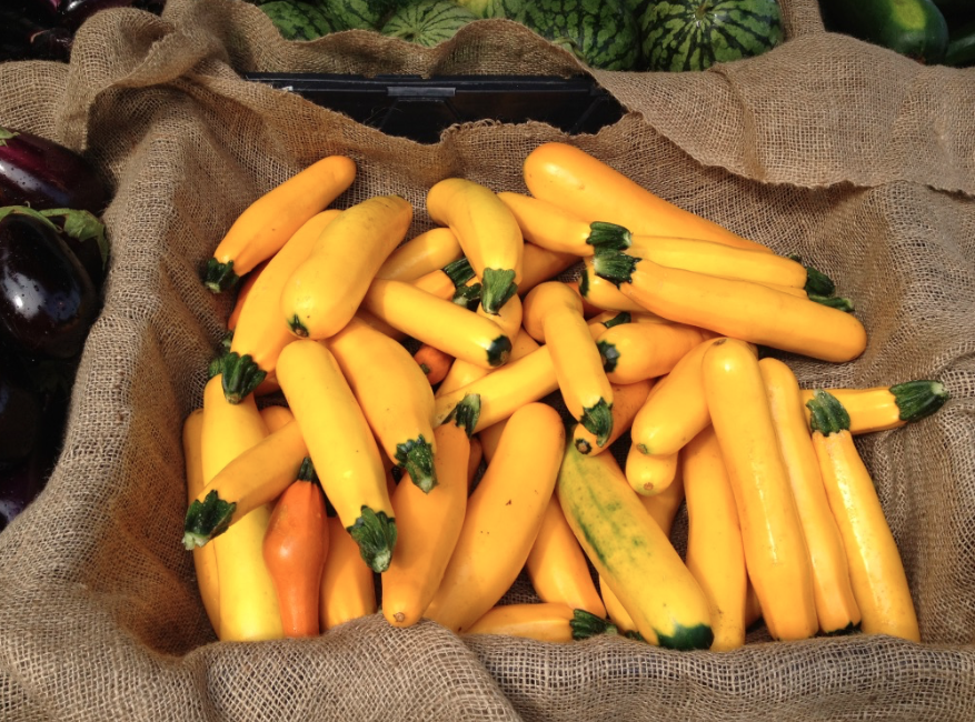 Yellow Squash for Dipping