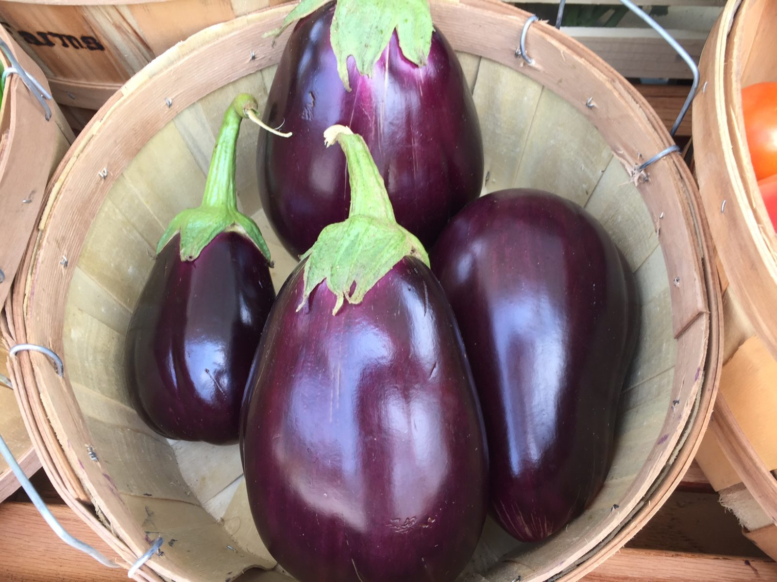 Eggplant from HeartBeet Farms