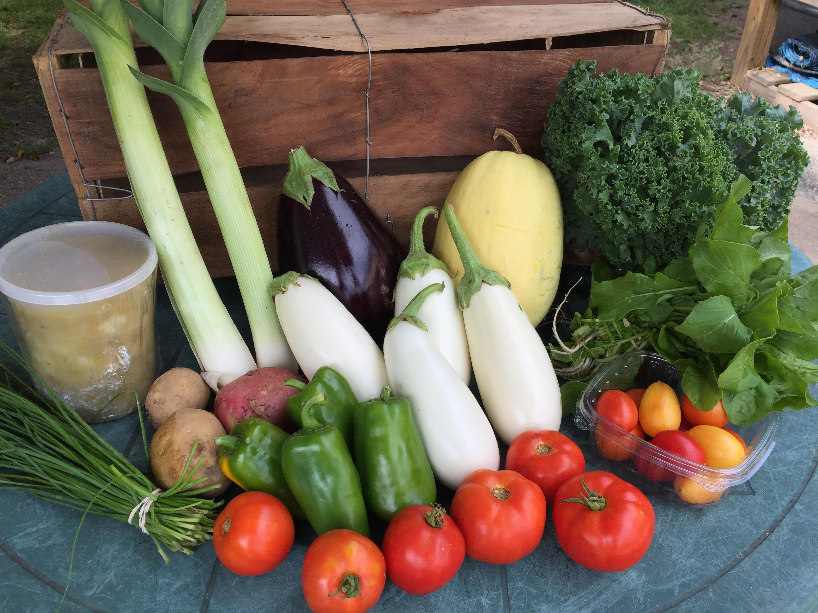HeartBeet Farms Week 13