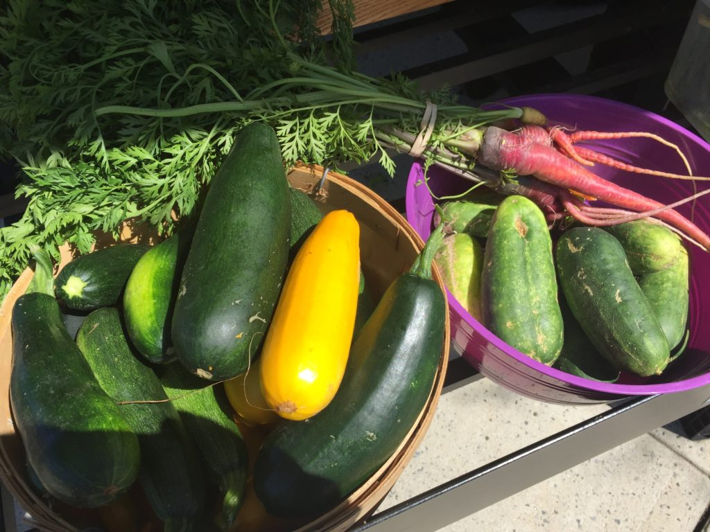 zucchini and cukes