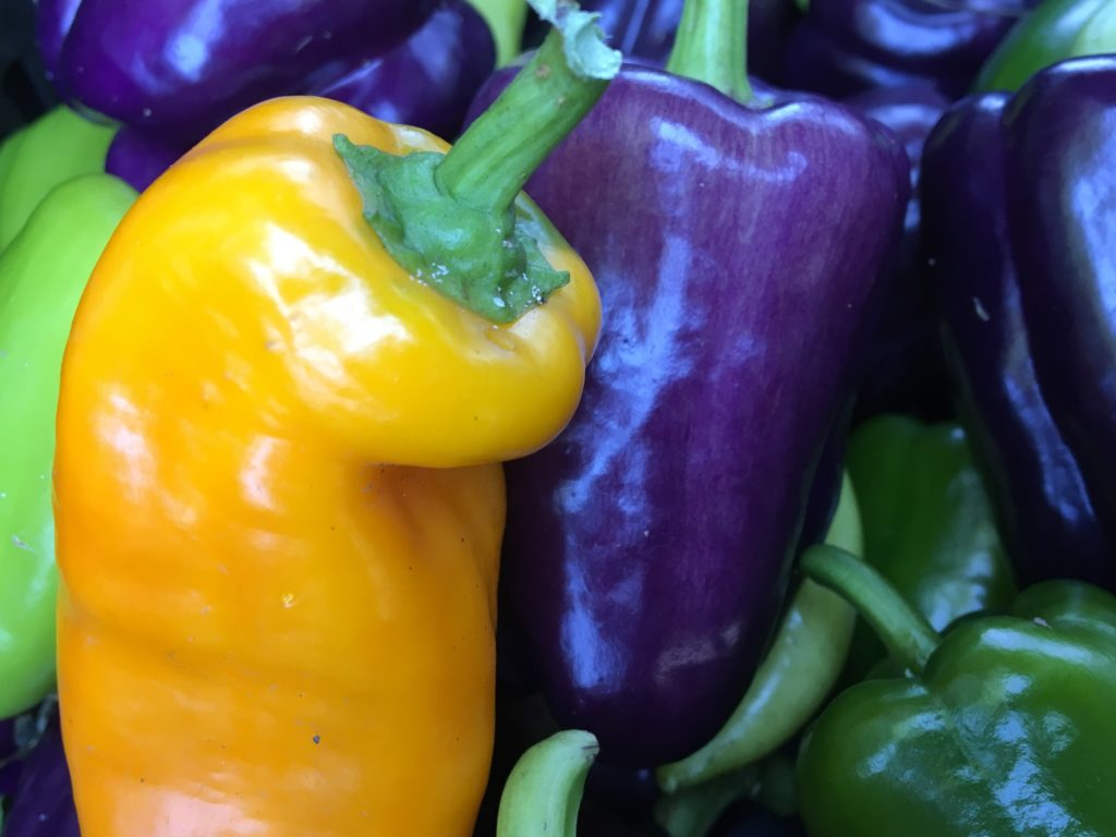 Colorful frying peppers from HeartBeet Farms