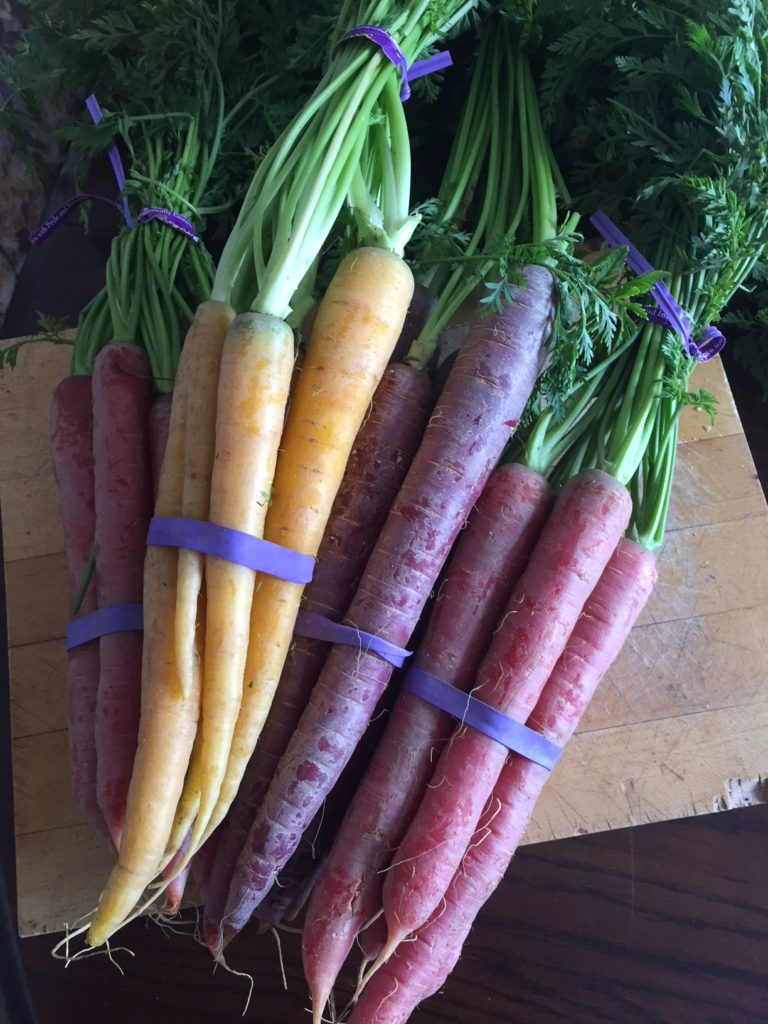 Rainbow Carrots from Heartbeet Farms