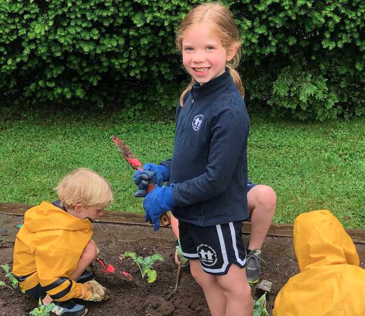 Garden Tools for Planting a Garden