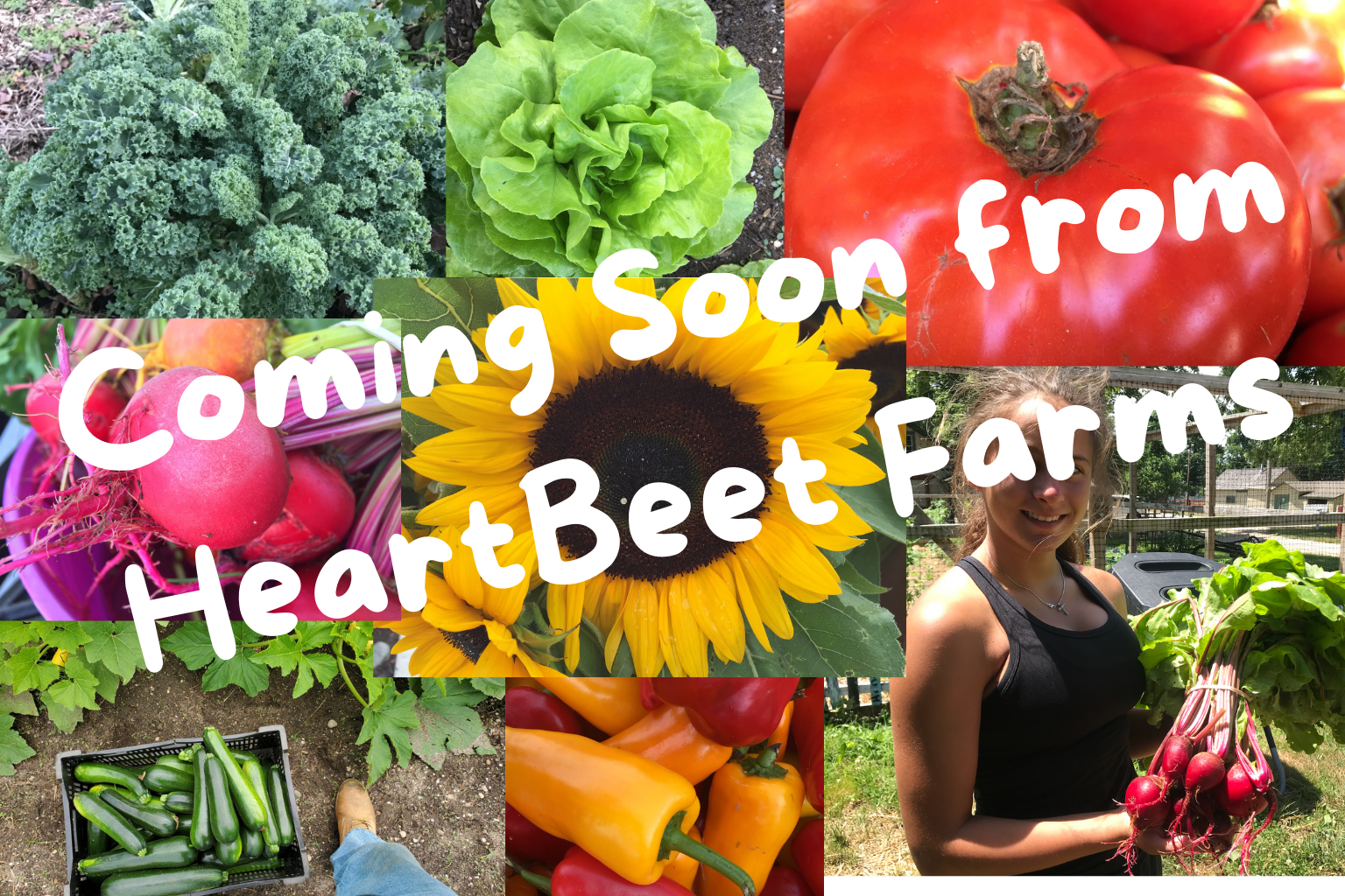 Coming soon from HeartBeet Farms
